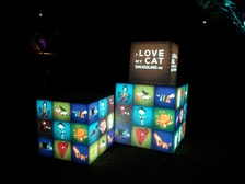 LOVE BOXES AT SPLORE